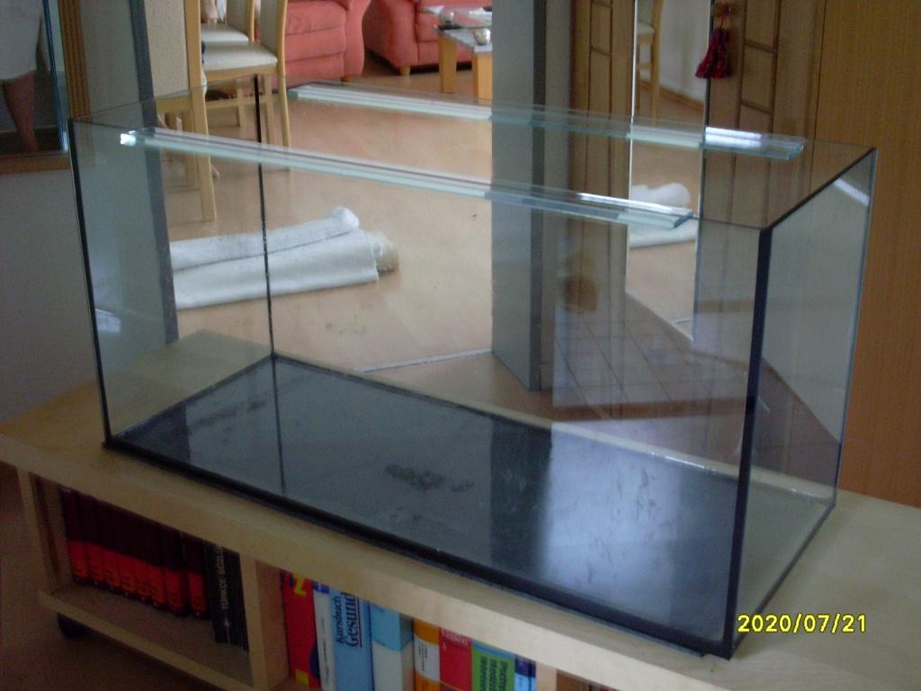reptilien schildkr ten tieranzeigen seite 36. Black Bedroom Furniture Sets. Home Design Ideas