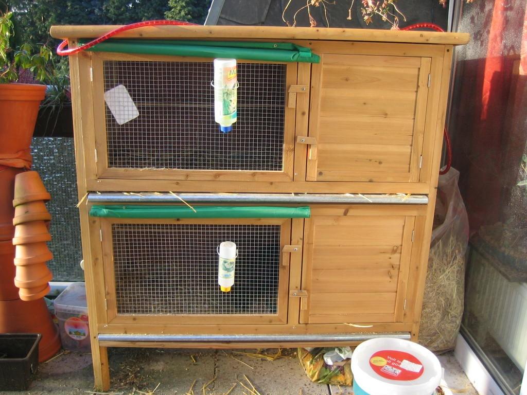 2 kaninchen inkl au enstall k fig und zubeh r kaninchen. Black Bedroom Furniture Sets. Home Design Ideas