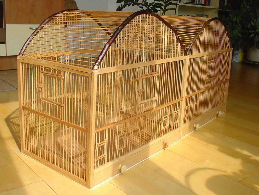 tieranzeigen vogelk fig kleinanzeigen. Black Bedroom Furniture Sets. Home Design Ideas