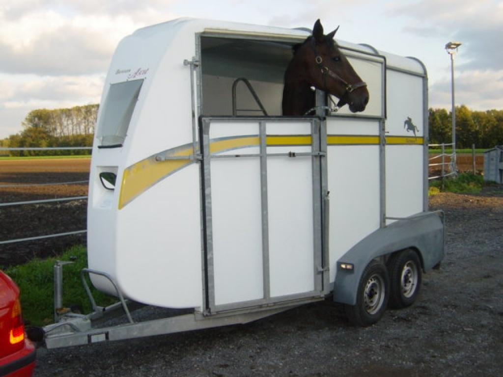 verleihe ifor williams pferdeanh nger mit frontausstieg und winterreifen pferdeanh nger. Black Bedroom Furniture Sets. Home Design Ideas