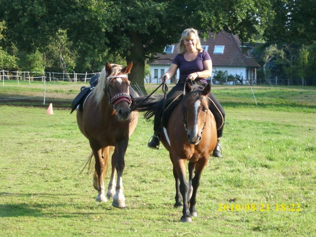 Pferd Reiten Lernen Reiter Lernen Nicht Nur Reiten