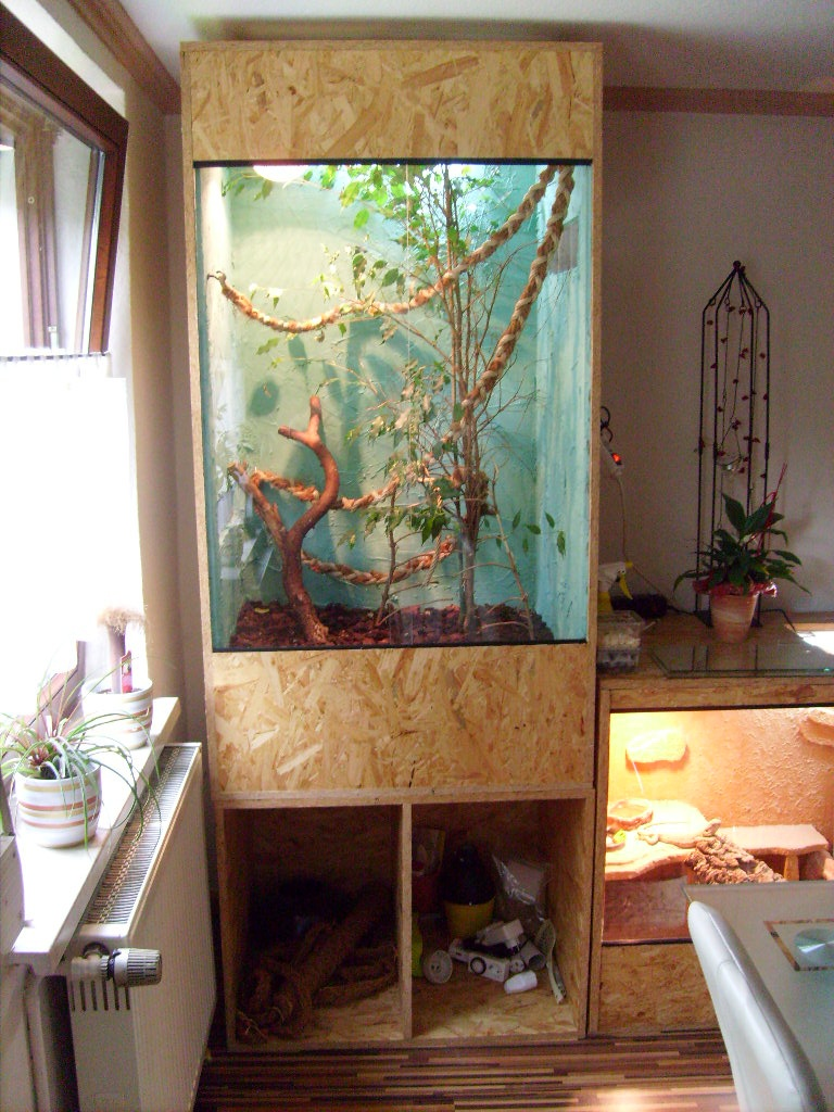 Chamaleon Beleuchtung ~ Hausdesignweb.co