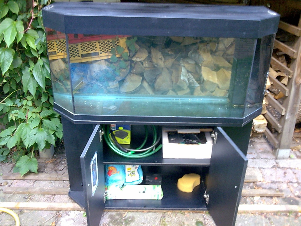 250 l panoramaaquarium abzugeben aquarien. Black Bedroom Furniture Sets. Home Design Ideas