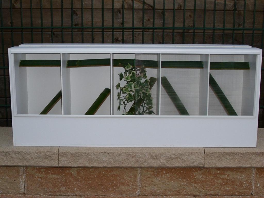 Terrarien aus forex platten terrarium