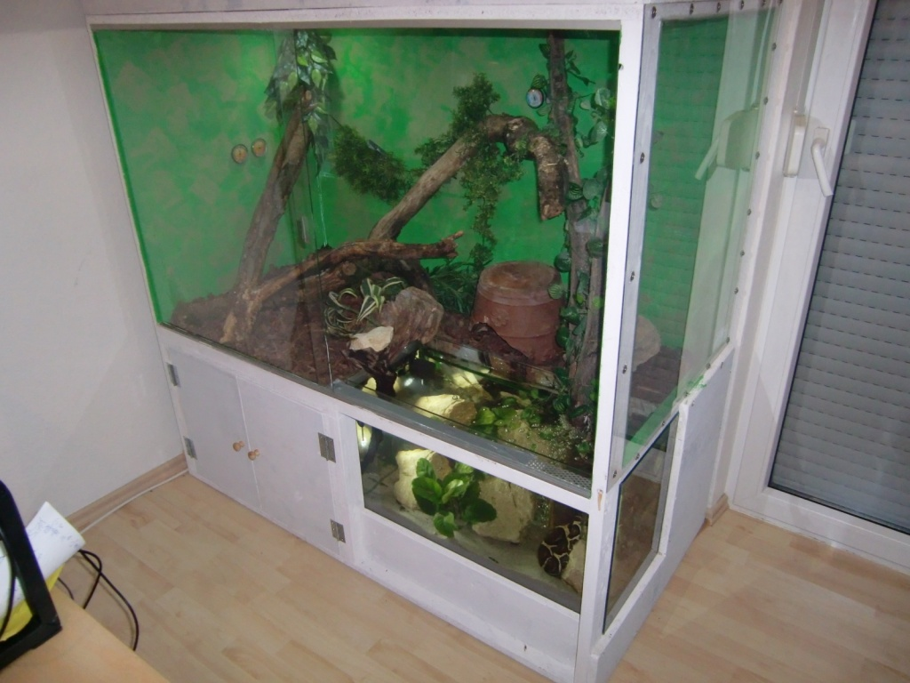 tieranzeigen aquaterrarium kleinanzeigen. Black Bedroom Furniture Sets. Home Design Ideas