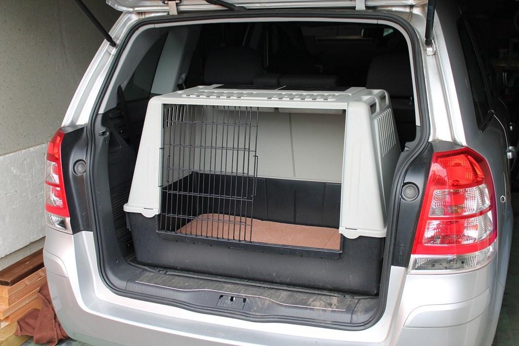 hunde hundezubeh r tieranzeigen seite 7. Black Bedroom Furniture Sets. Home Design Ideas