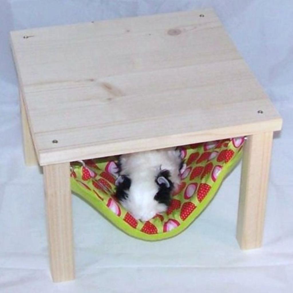 nagetiere tieranzeigen seite 13. Black Bedroom Furniture Sets. Home Design Ideas