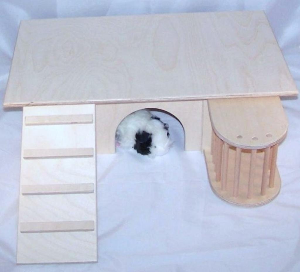 tieranzeigen meerschweinchen kleinanzeigen. Black Bedroom Furniture Sets. Home Design Ideas