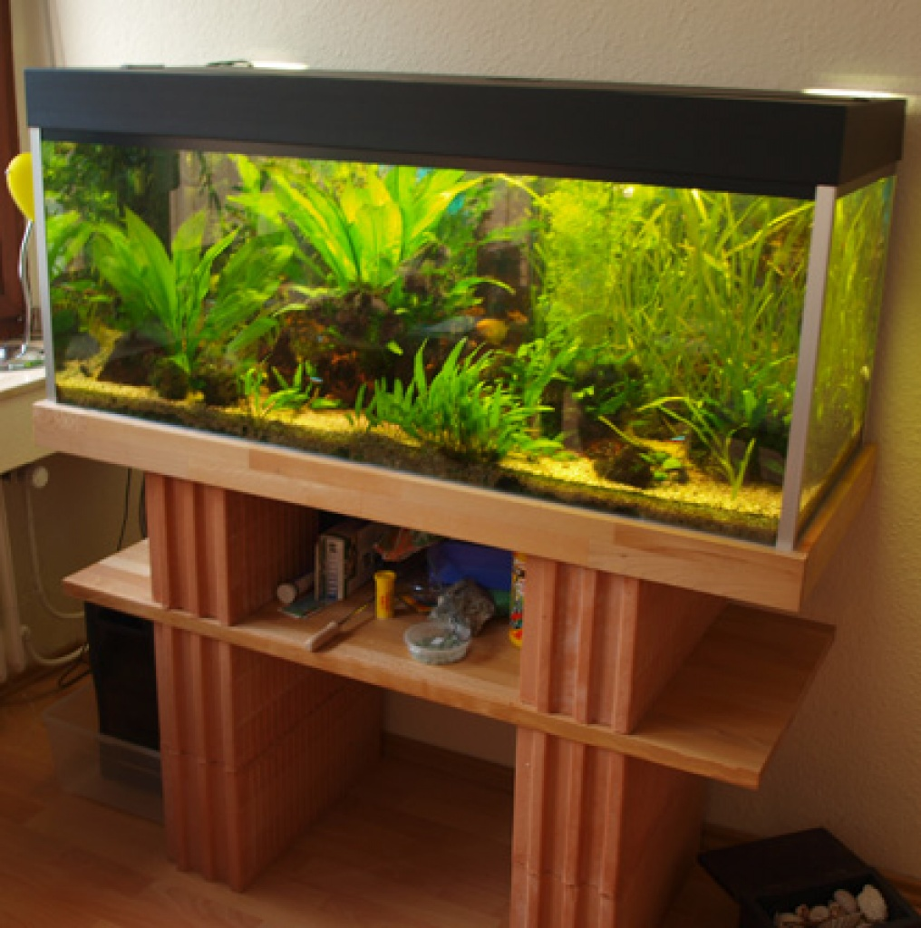 komplett aquarium mit viel zubeh r 300 liter aquarien. Black Bedroom Furniture Sets. Home Design Ideas