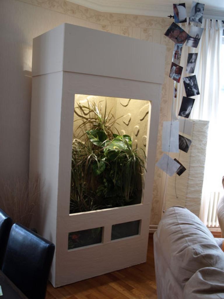 tieranzeigen chamaeleons kleinanzeigen. Black Bedroom Furniture Sets. Home Design Ideas