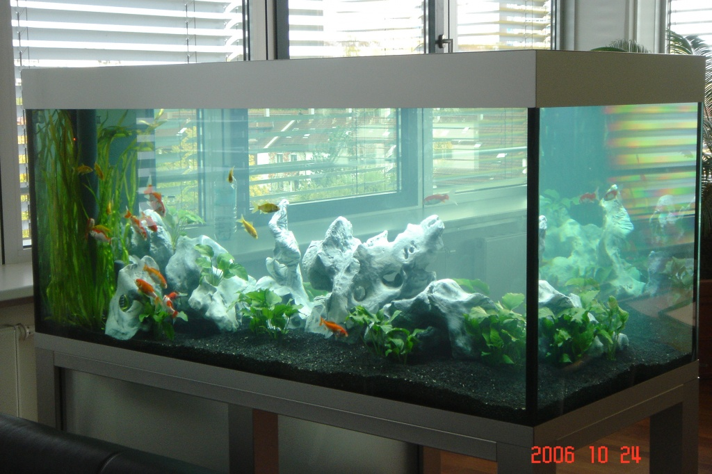 Tieranzeigen unterschrank kleinanzeigen for Aquarium unterschrank