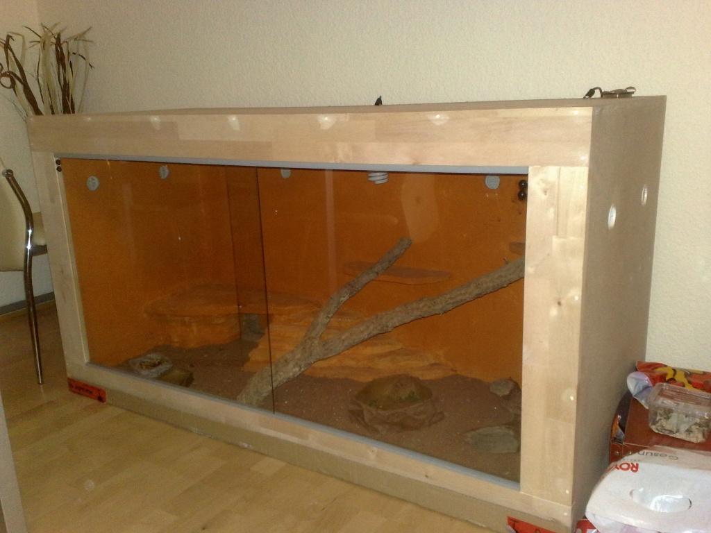 tieranzeigen w stenterrarium kleinanzeigen. Black Bedroom Furniture Sets. Home Design Ideas