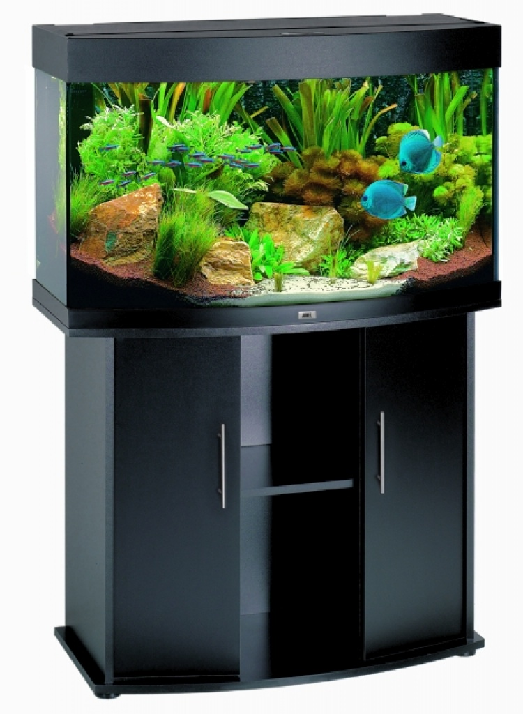 komplettes aquarium mit fischen pflanzen zuberh r u. Black Bedroom Furniture Sets. Home Design Ideas