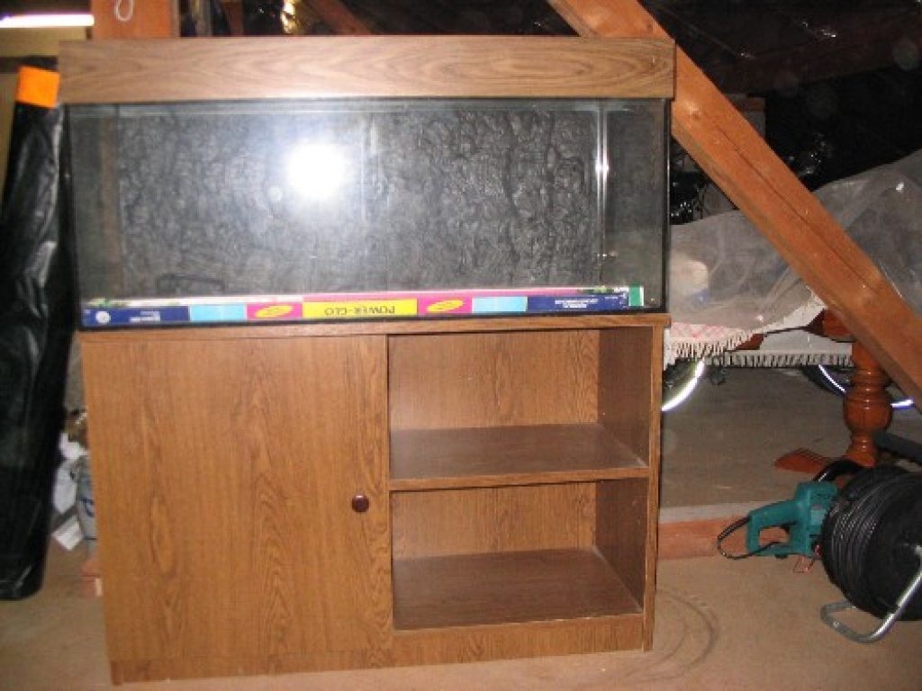 tieranzeigen glasbecken kleinanzeigen. Black Bedroom Furniture Sets. Home Design Ideas