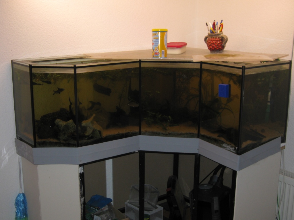 tieranzeigen eckaquarium kleinanzeigen. Black Bedroom Furniture Sets. Home Design Ideas