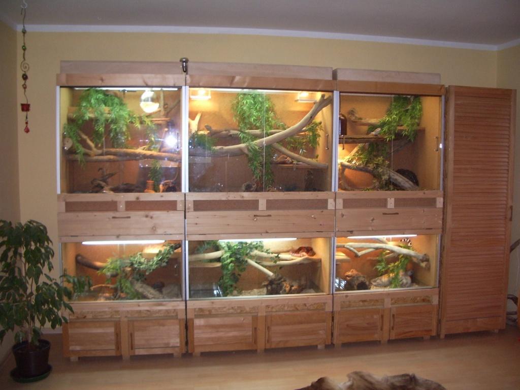 Terrarienwand/ Terrarium zu verkaufen! - Reptilien sonstige