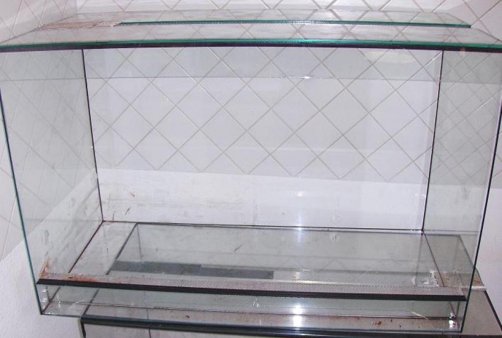 reptilien schlangen tieranzeigen seite 53. Black Bedroom Furniture Sets. Home Design Ideas