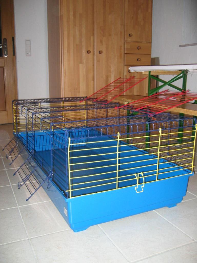 tieranzeigen integrierte kleinanzeigen. Black Bedroom Furniture Sets. Home Design Ideas