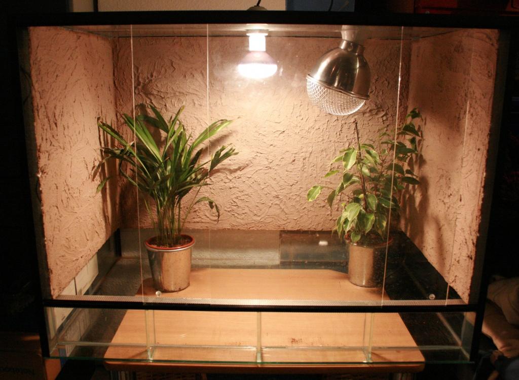 tieranzeigen lampenfassungen kleinanzeigen. Black Bedroom Furniture Sets. Home Design Ideas